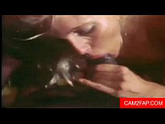 Oral Creampie Free Vintage Porn Video