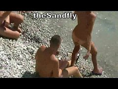 theSandfly Hedonistic Holidaymakers!